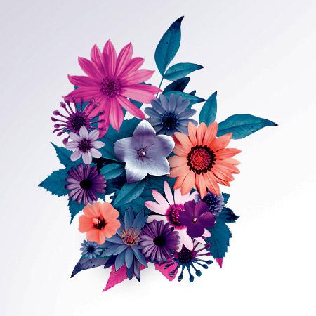 kvetinarstvo kosice